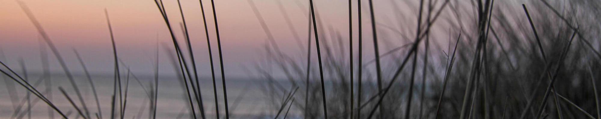Solnedgangen ved Vesterhavet